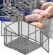 Весы для взвешивания животных 600,  1000,  1500,  2000,  3000 кг